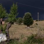 331-Paesaggi-03-06-2009-1024x682